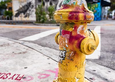 Fireplug, Florida (Jennifer Vahlbruch)